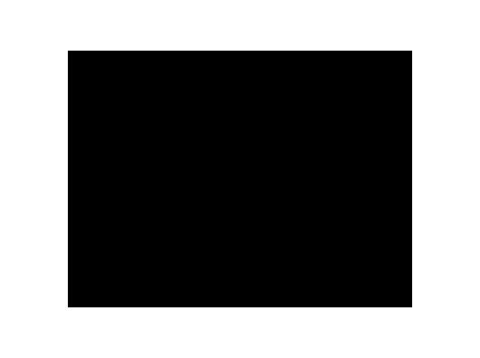 Sanya Saarinen